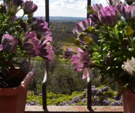 Terme e relax nella campagna viterbese
